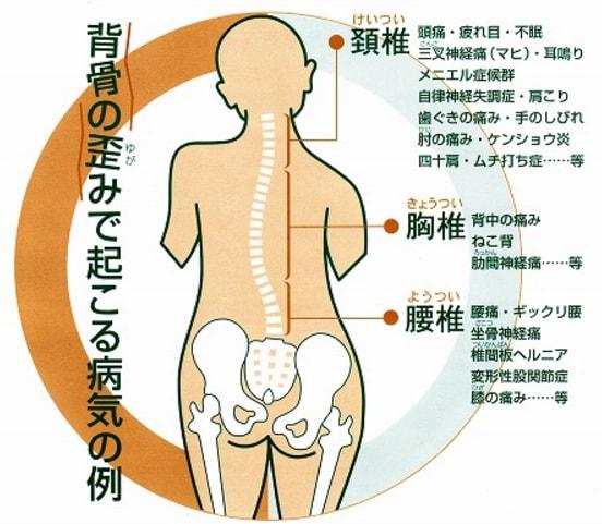 背骨の柔軟性について(肩こり)