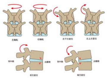 調整する背骨の見分け方